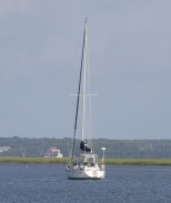 sailspartina_boatcharter_follybeach_charleston_spartina_capers